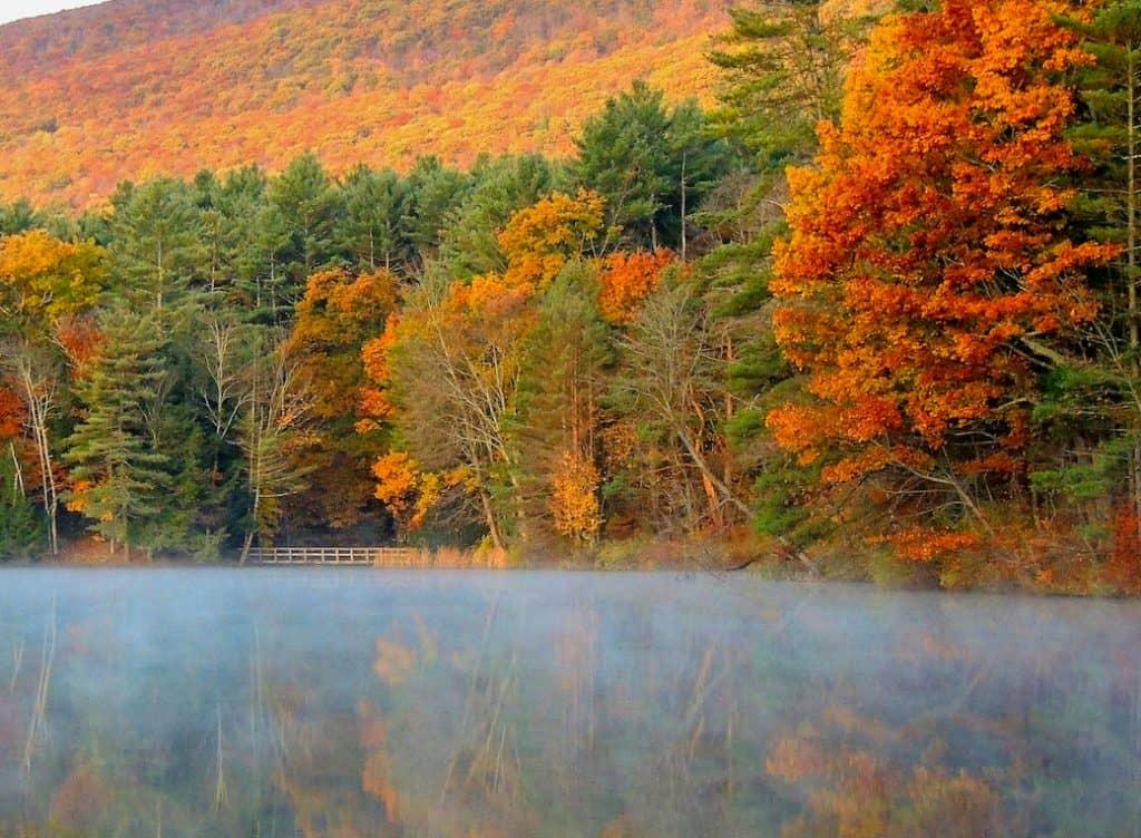 Fall Foliage at Lake Shaftsbury State Park, VT - copyright: Tara Schatz