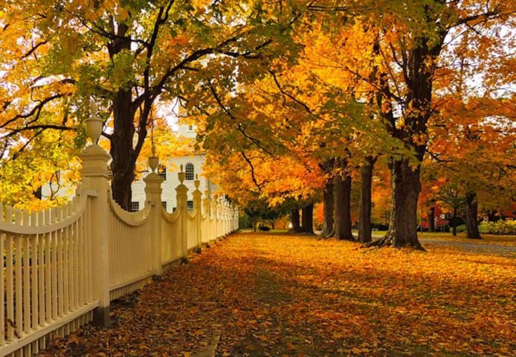 The fence in front of the Old First Church in Bennington, VT during fall foliage season