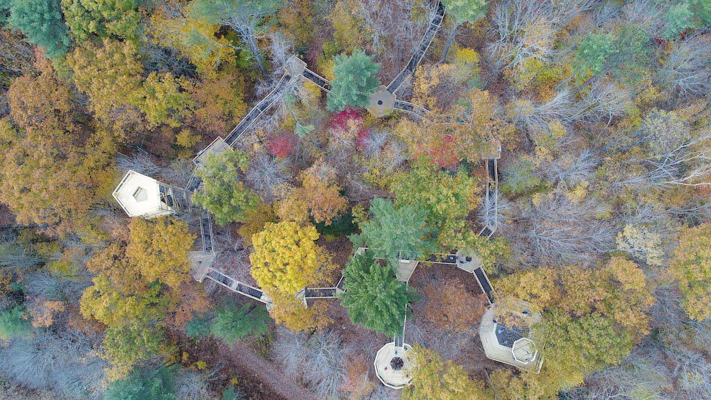 An arial view of the treetop canopy walk at VINS in Quechee Vermont