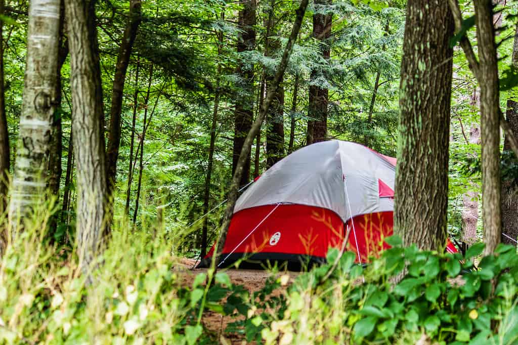 A red tent at a campsite in Wilgus State Park in Vermont.