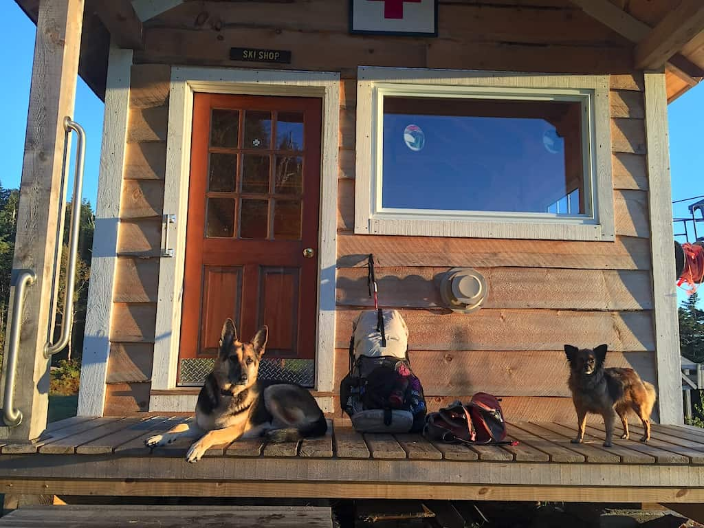 Two dogs lie on the porch of a lodge on Vermont's long trail.