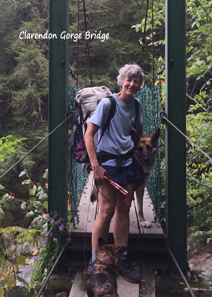 Shirley standing on a suspension bridge in Vermont with her two dogs.