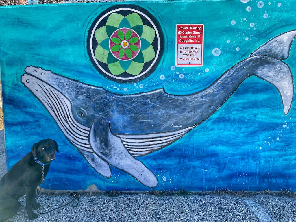 Whales mural in Rutland, Vermont.
