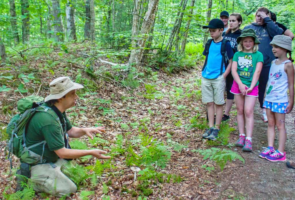 A park interpreter shows a group of kids a poisonous mushroom at Little River State Park in Vermont.