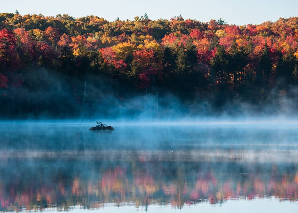 Early morning in fall at Woodford State Park featuring fog rising off the lake and fall foliage.