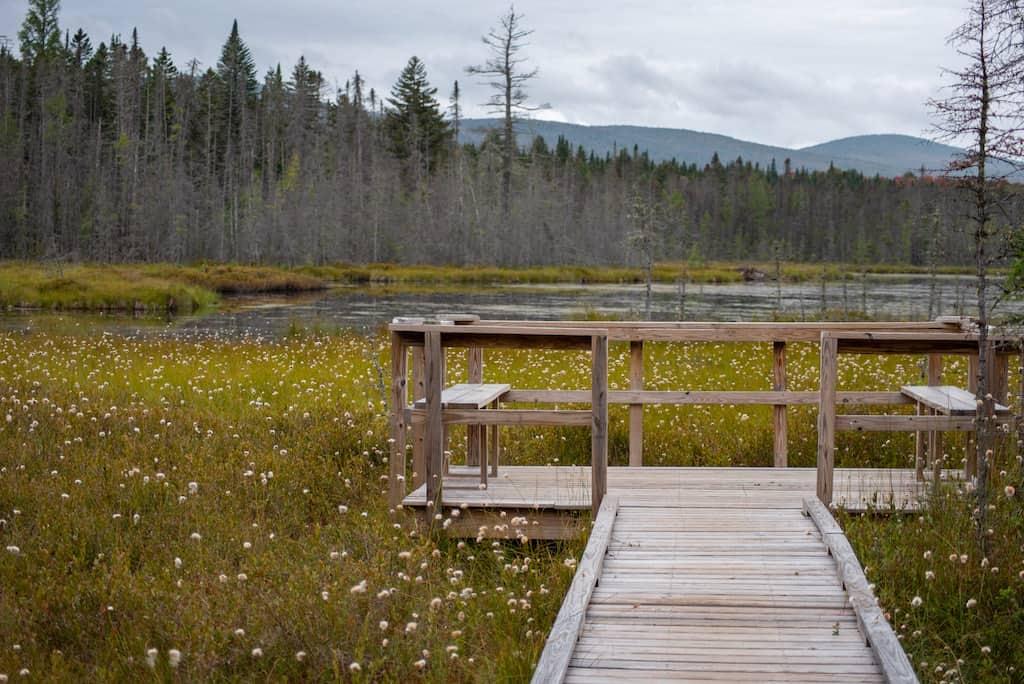 Moose Bog Trail in Vermont.