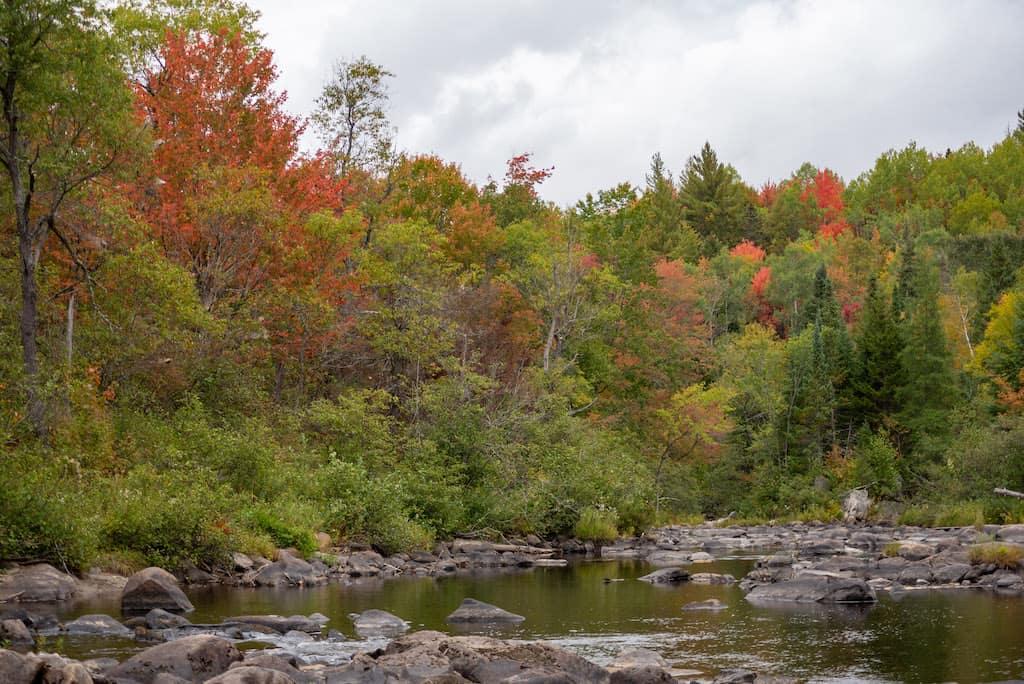 The river in Silvio Conte National Wildlife Refuge.