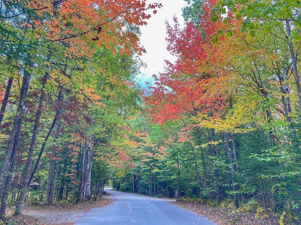 The road into the campground at Brighton State Park in Vermont.