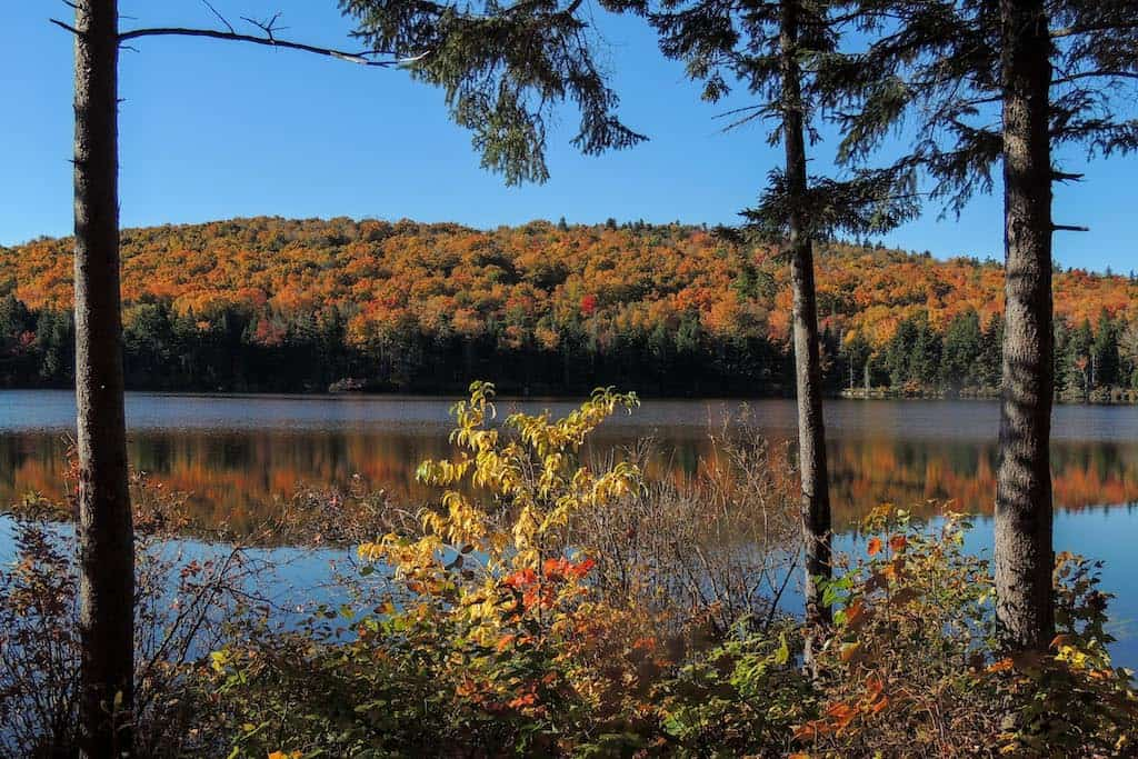 A fall foliage view of Grout Pond in Vermont.