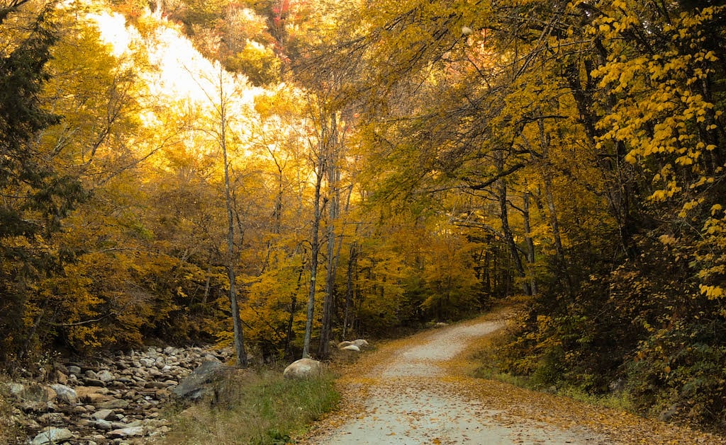 Kelly Stand Road in Arlington, Vermont during the fall.