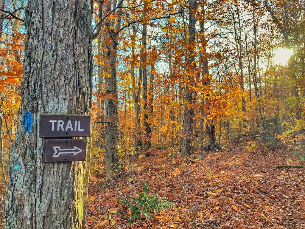 A trail sign in Woodford State Park during autumn in Vermont.