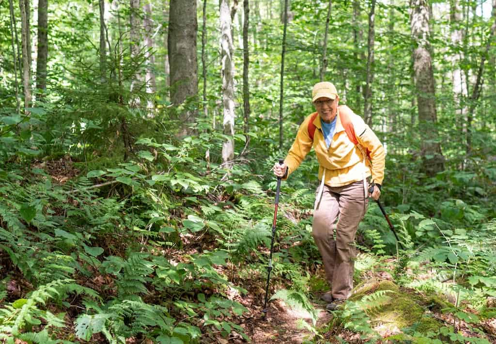 A woman hikes through the woods in the summer at Woodford State Park in Vermont.