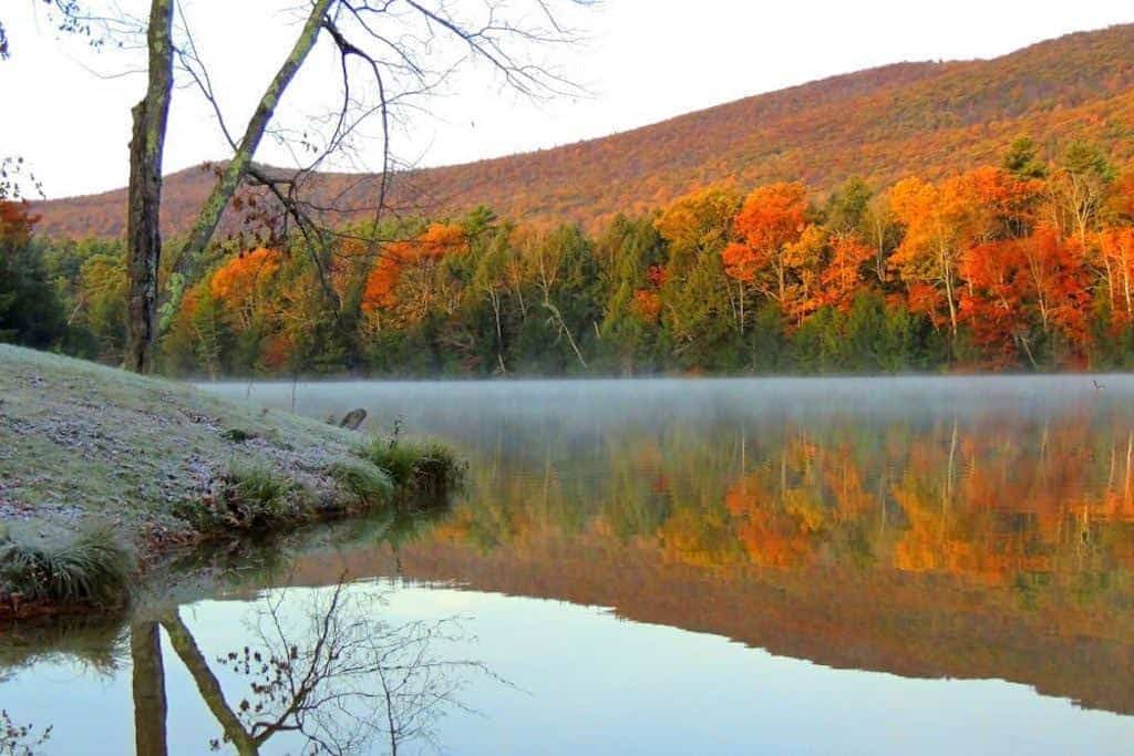 Fall foliage at Lake Shaftsbury State Park in Vermont.