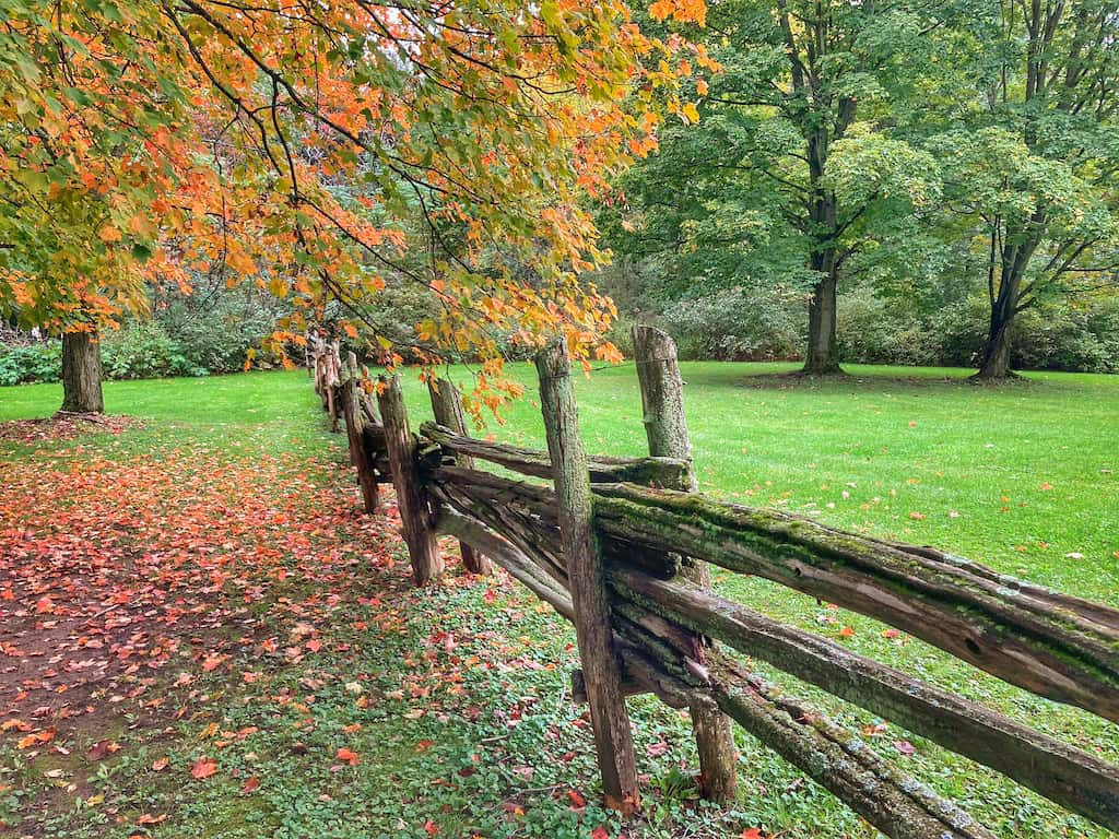 Early fall foliage in Grand Isle State Park, Vermont.