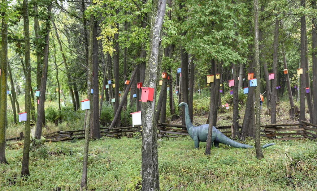 A view of the birdhouse forest in South Hero Vermont, including a friendly dinosaur statue.
